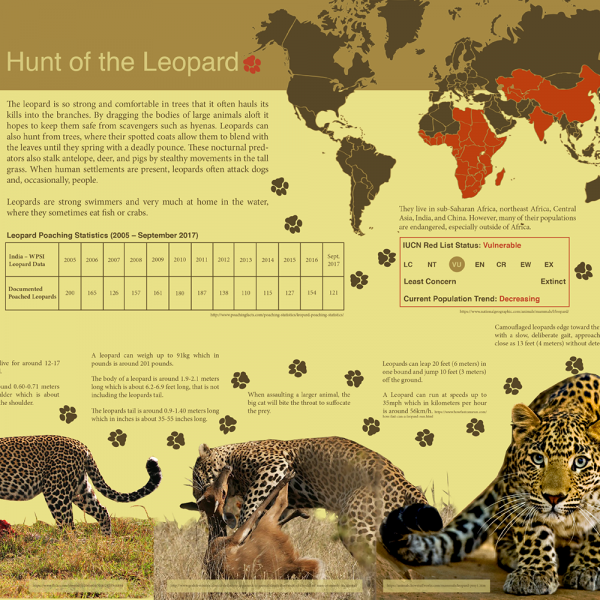 Hunt of the Leopard